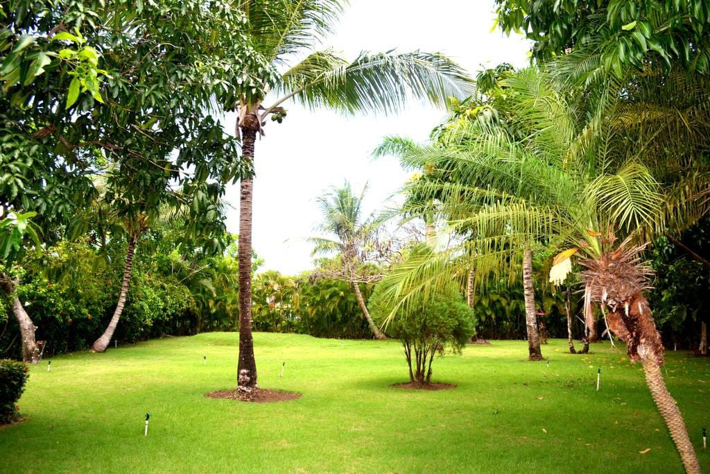 The surrounding area of the villa Cueva. Take a walk and see how beautiful this area is.